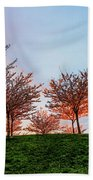 Flowering Young Cherry Trees On A Green Hill In The Park  Beach Towel