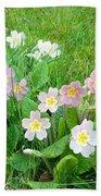 Flowers Along The Edge 1006 Beach Towel