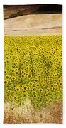 Flowers And Horses Near Setinil Spain Beach Towel
