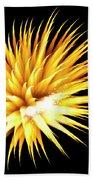 Flowerworks #34 Beach Towel