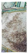 Fluf And Mouse Beach Towel
