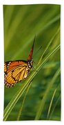 Fluttering Through The Summer Grass Beach Towel