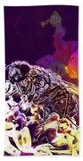 Fly Housefly Insect Close Macro  Beach Towel
