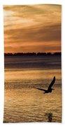 Flyby Beach Towel