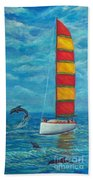 Flying Dolphin Beach Towel
