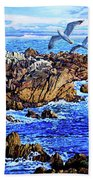 Flying High Over California Beach Towel