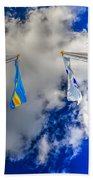 Flying High Beach Towel