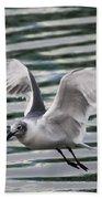 Flying Seagull Beach Towel