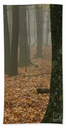 Foggy Forest  Beach Towel