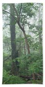 Foggy Morning In The Woods Beach Towel