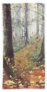 Foggy Path Beach Towel