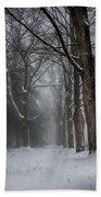 Foggy Vermont Winter Path Beach Towel