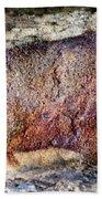 Font De Gaume Bison Beach Towel