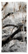 For The Grace Of The Beauty Of A Aged Tree Beach Towel