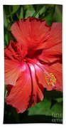 For The Love Of Hibiscus Beach Towel