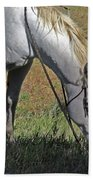 For The Love Of His Horse Beach Towel