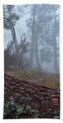 Forest And Fog In Serra Da Estrela Beach Towel
