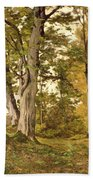 Forest At Fontainebleau Beach Towel