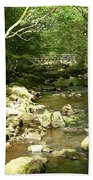 Forest Bridge Beach Towel