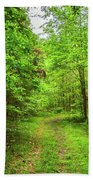 Forest Byway Beach Towel