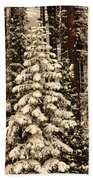 Forest Christmas Tree Beach Towel