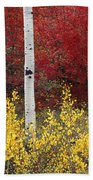 Forest Color Beach Towel