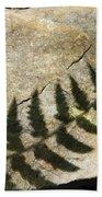 Forest Fern Shadows Beach Towel