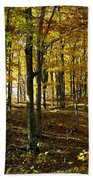 Forest Floor One Beach Towel