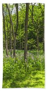 Forest Floor Dame's Rocket Beach Towel