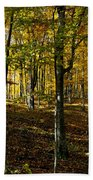 Forest Floor Two Beach Towel