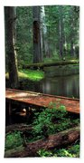 Forest Foot Bridge Beach Towel