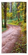 Forest Footpath Beach Towel by Carlos Caetano
