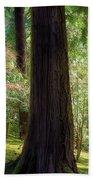 Forest In Portland Japanese Garden Beach Sheet