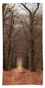 Forest Lane Near Maarsbergen Beach Towel