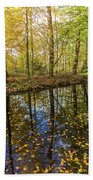 Forest Leaf Reflection Beach Towel