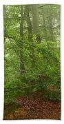 Forest Light 3 Beach Towel