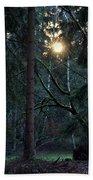 Forest Magic 7 Beach Sheet