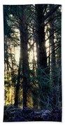 Forest Magic 8 Beach Towel