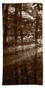 Forest Mist B And W Beach Towel