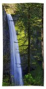 Forest Mist Beach Towel by Chad Dutson
