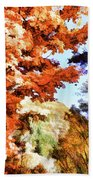 Forest Of Fall Colors Beach Towel