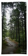 Forest Path At Grafton Notch State Park Beach Towel