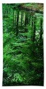 Forest Reflection Beach Sheet