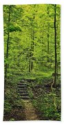 Forest Stairs Beach Towel