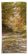 Forest Stone Path Beach Towel