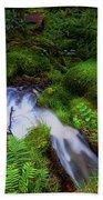 Forest Stream. Benmore Botanic Garden Beach Towel