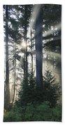 Forest Sunrise Beach Towel