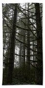 Forest Through The Trees Beach Towel
