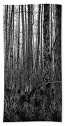 Forest Thru The Trees Beach Towel
