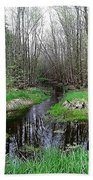 Forest Trees Creek Pathway Beach Towel